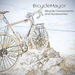 The Bicycle Mayor