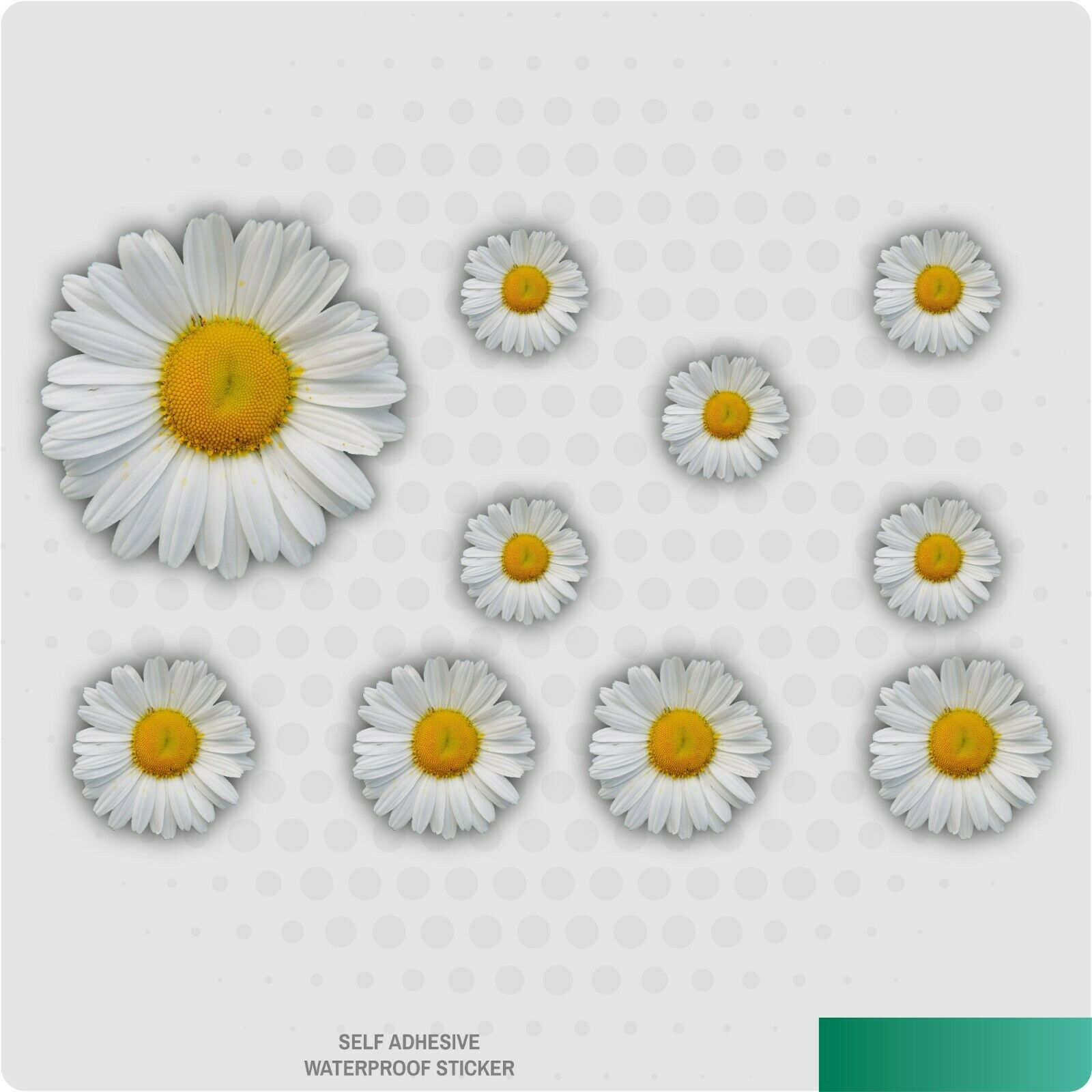 Home Decoration - Painted Daisy Stickers Decals Graphic Nursery Wall Decoration Art Home
