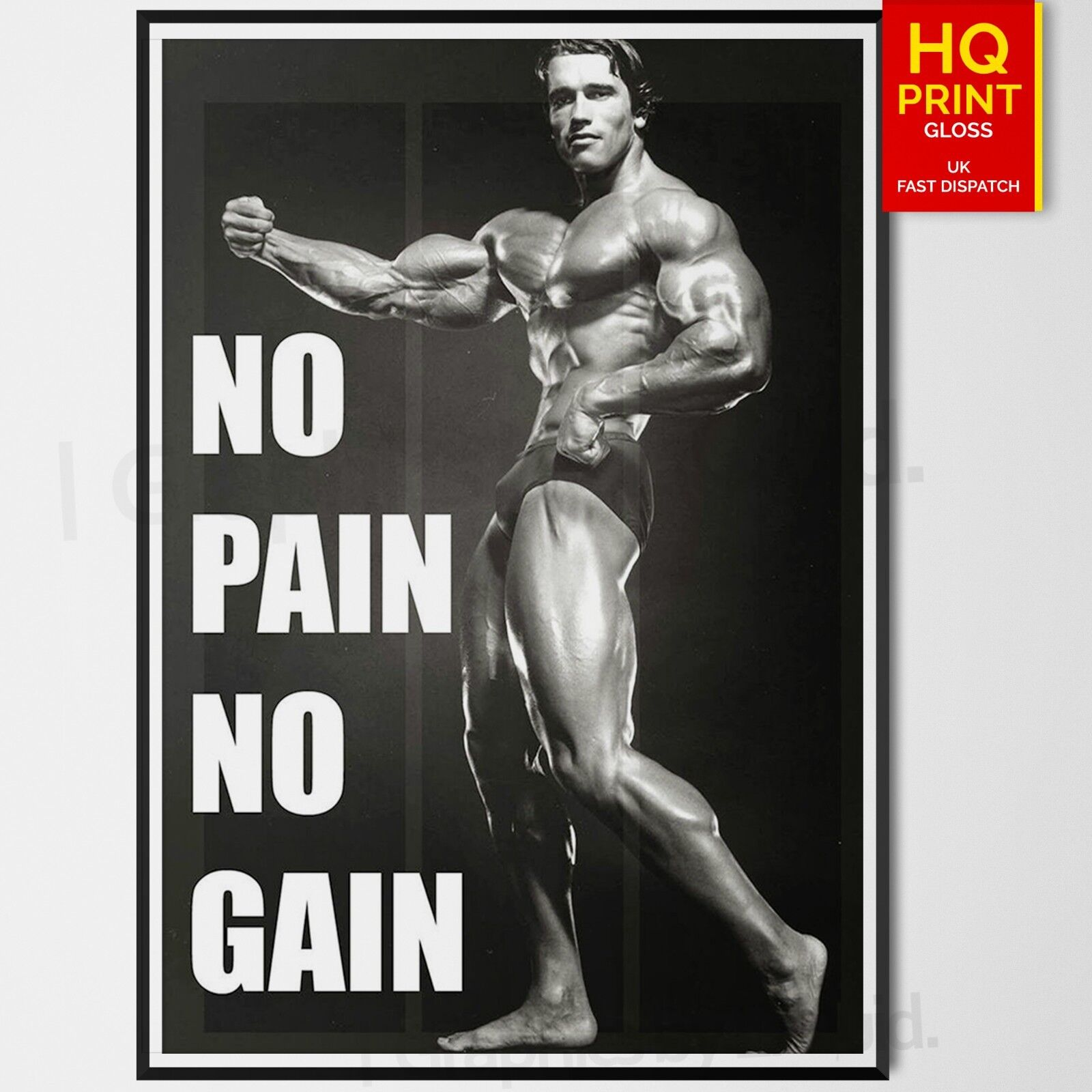 BODYBUILDING MOTIVATIONAL GYM A4 POSTER