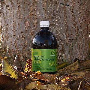 EM-A, effektive Mikroorganismen, 1 L Flasche, EM-Aktiv, Garten, Teich