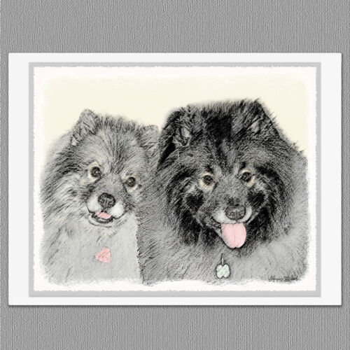 6 Keeshond Portrait Dog Blank Art Note Greeting Cards