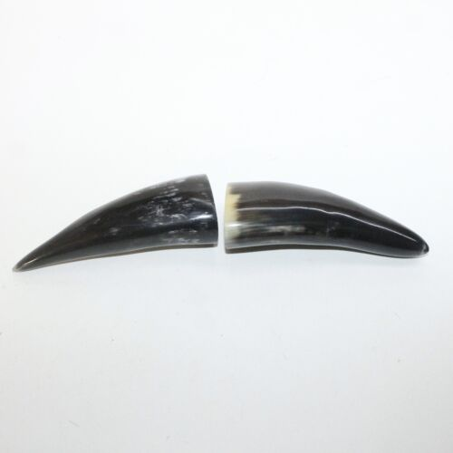 2 Polished Cow Horn Tips #3814 Natural Colored
