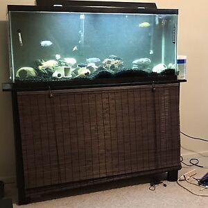 55 gallon fish tank w/ stqnd