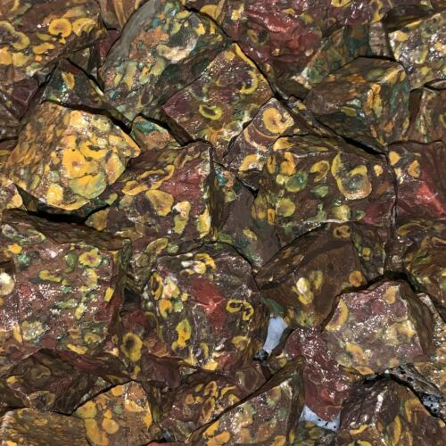 1000 Carat Lots of Leopard Jasper Rough + a FREE faceted Gemstone - Very Nice