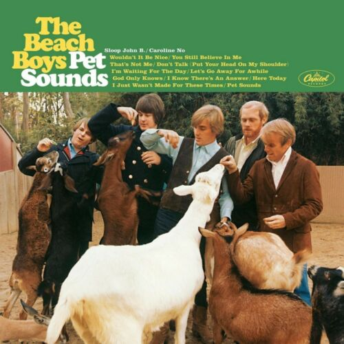 The BEACH BOYS Pet Sounds BANNER HUGE 4X4 Ft Fabric Poster Tapestry Flag art