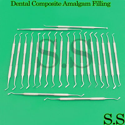 22 Pcs Dental Composite Plastic Amalgam Filling Restorative Instruments