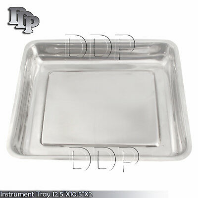 Instrument Tray 12.5x10.5x2 Dental Veterinary Surgical Instruments