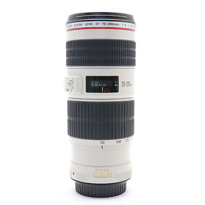 Canon EF70-200mm F/4L IS USM #113