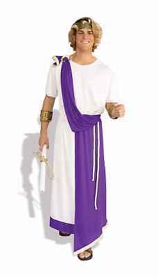 FORUM JULIUS CAESAR ROMAN ADULT HALLOWEEN COSTUME SIZE STANDARD 58322
