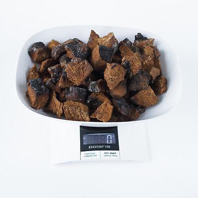 (Chaga Fresh Harvest November 2018 3,5-67Oz Wild Mushroom Chunks 0,4-1,2inch Tea)
