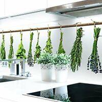 Küchenrückwand Klebefolie Kräuter selbstklebend PVC 400x60 Sachsen - Plauen Vorschau
