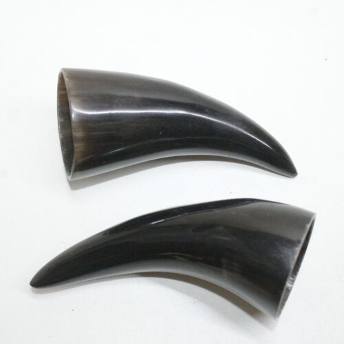 2 Polished Cow Horn Tips #0010 Natural Colored