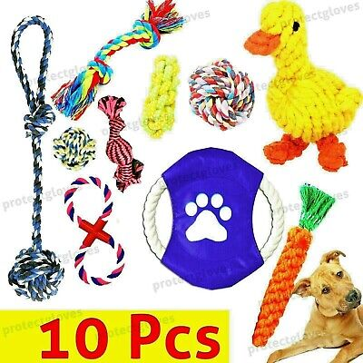Pet Dog Chew Toys Dental Cleaning Braided Rope Carrot Hamster Outdoor Pet Toys