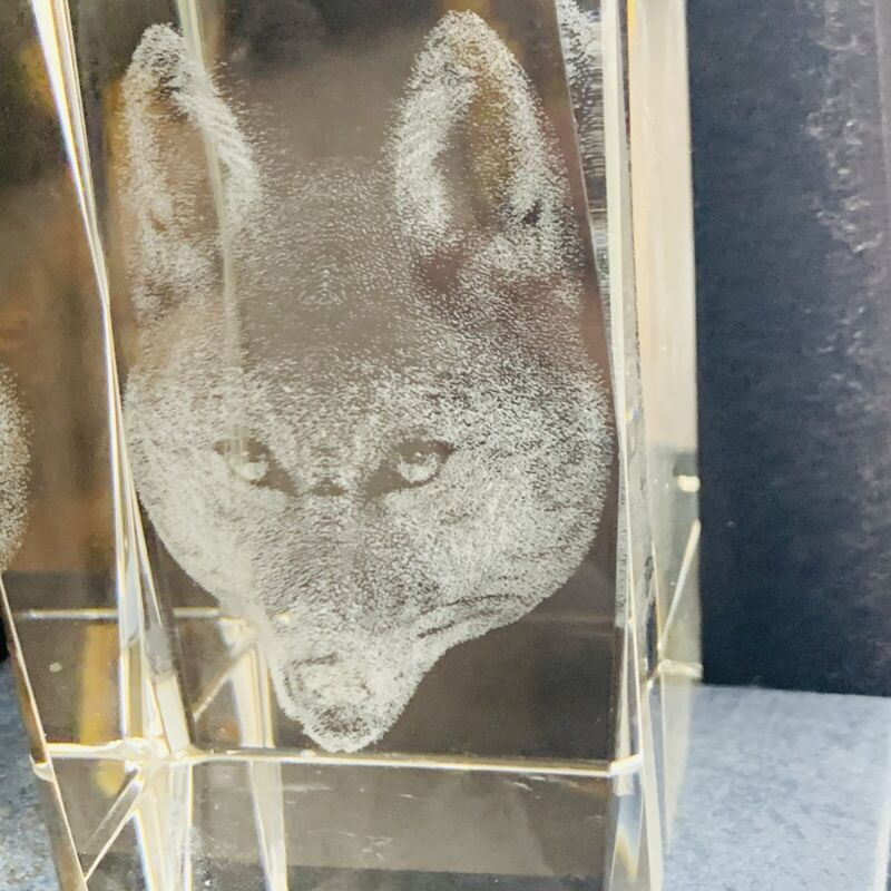 3D Laser Etched Crystal Glass Cube Wolf Wolves Tribal Vintage Paperweight W/ Box