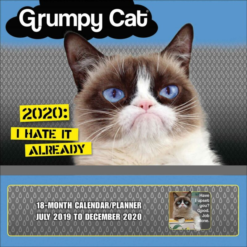 Grumpy+Cat+2020+Official+Square+Wall+Calendar+Planner+-+loads+of+extras