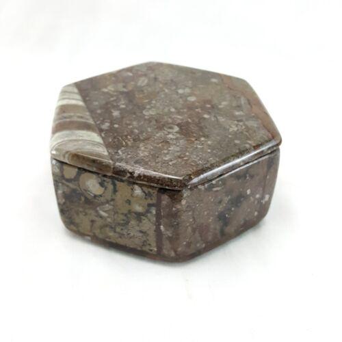 "Orthoceras Ammonite Fossil Jewelry Trinket Box Hexagon Gemstone Storage 3.75"""