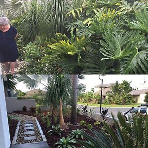 JTS Landscape Pelican Waters Caloundra Area Preview
