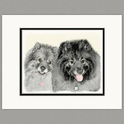 Keeshond Portrait Original Art Print 8x10 Matted to 11x14