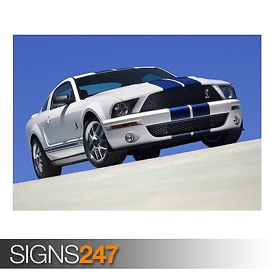 (2007 FORD SHELBY GT500 (AC753) CAR POSTER - Photo Poster Print Art * All Sizes)