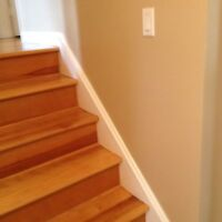 EXPERIENCE  RELIABLE  METICULOUS  PAINTER