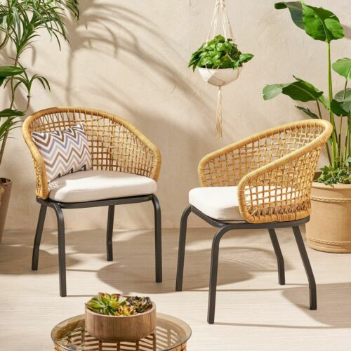 Herbert Outdoor Wicker Club Chair with Cushion (Set of 2) Home & Garden