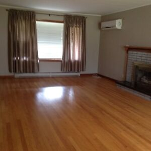Large 3 Bedroom Apartment in Sussex $900