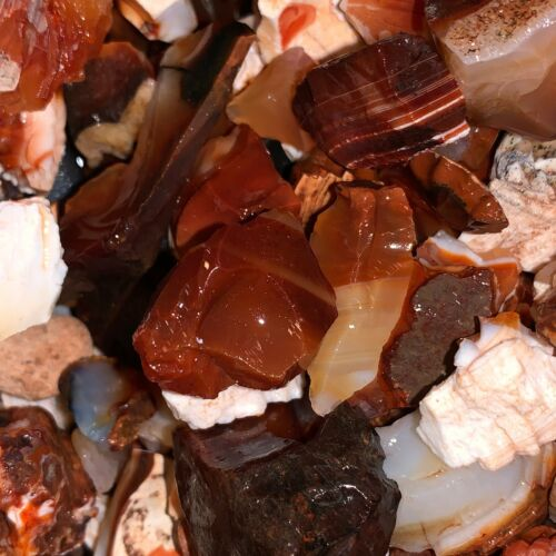 500 Carat Lots of SMALL Natural Carnelian Rough + a FREE Faceted Gemstone