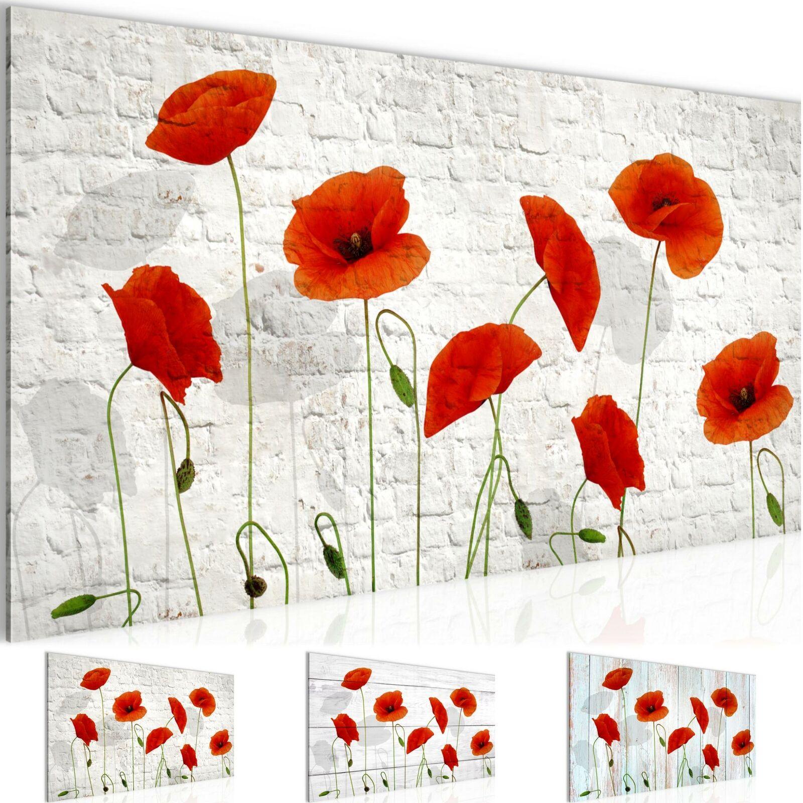 oshhni 12 Teilige Echte Getrocknete Blumenbl/ätter Ahornblatt f/ür DIY Weihnachtskartenherstellung