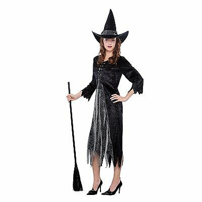 Silver Witch Women's Halloween Costume Dress & Hat NEW One Size Fit's Most