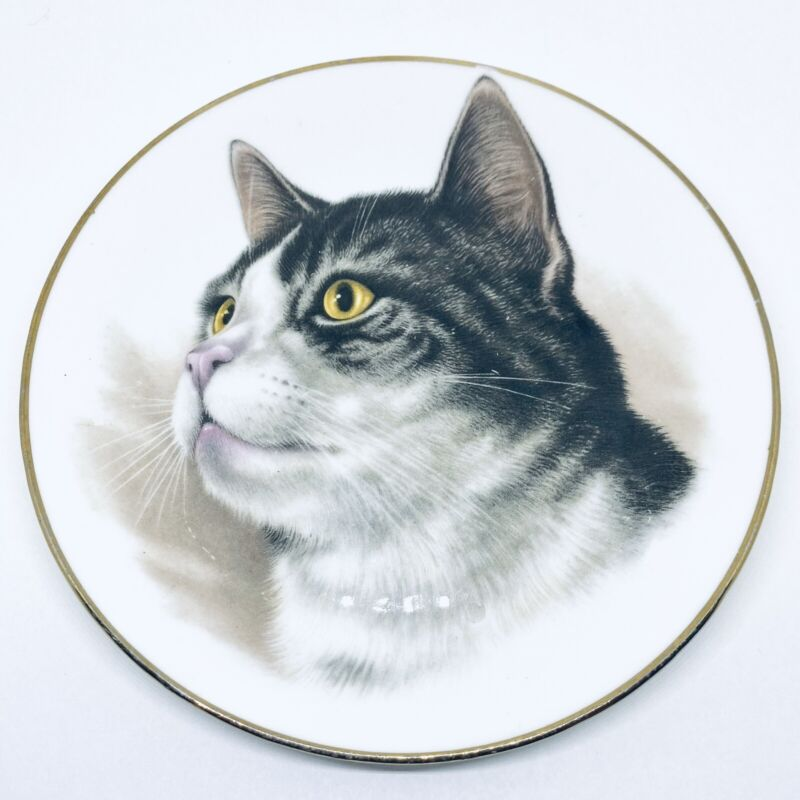 "Vtg 6"" GRAY WHITE STRIPED CAT Duchess Bone China Plate ENGLAND"
