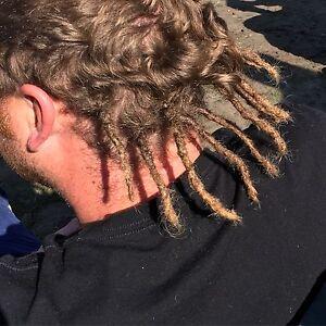 Van Life Dreadlocks Arthur River Circular Head Preview