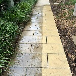 Wildcat Garden Services Strathfield Strathfield Area Preview