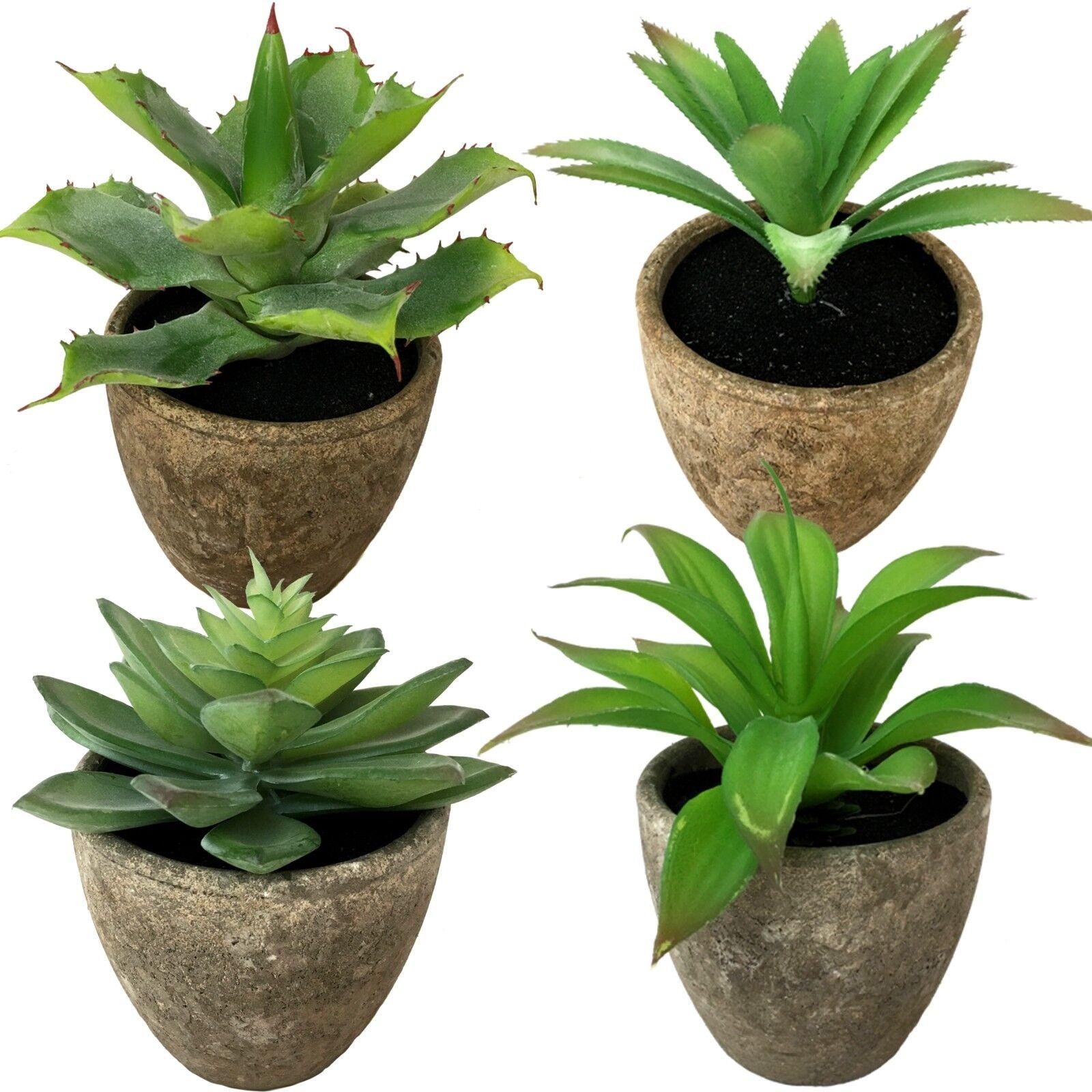 4 x Agave Aloe Vera Sukkulenten Pflanze Topf künstlich Wellness Kaktus NEU 1714B
