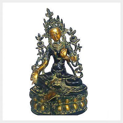 Grüne Tara 36 cm 3,7 Kilo Messing Nepal Buddhismus Beschützerin Shyama Buddha