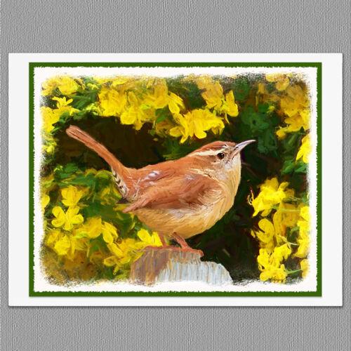 6 Carolina Wren Wild Bird Blank Art Note Greeting Cards