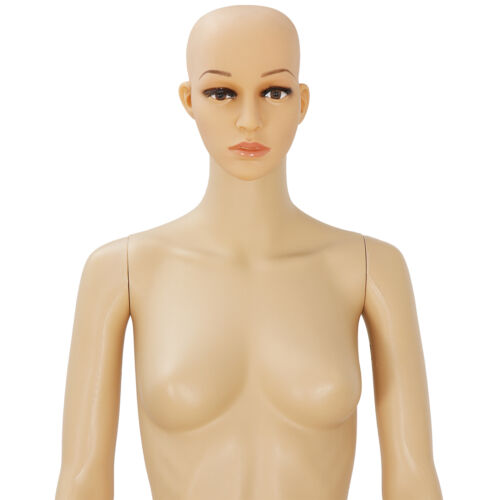 PP Female Mannequin Realistic Display Head Turns Dress Body Form Show Model Business & Industrial