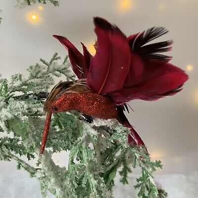 Funky Red Feather Hummingbird Clip On Christmas Decoration Gisela Graham Vintage