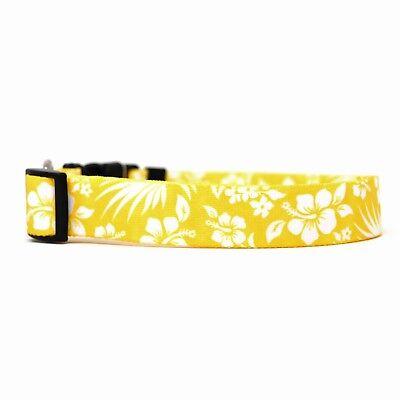 - NEW Yellow Dog and Cat Collar Aloha Hawaiian Flowers by Yellow Dog Design