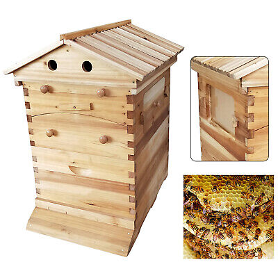 Deluxe Bee Hive House Auto Honey Frames Beekeeping Brood Wooden Box Kit Durable