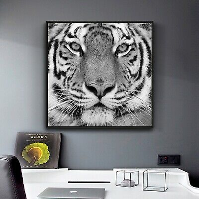 "Tiger Face Black White Art Paint Silk Canvas Poster Wall Decor Unframed 16""x16"""
