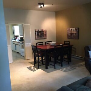 Classic 1200 sq' two bedroom condo on south side