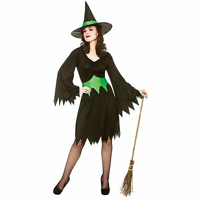 Wicked Witch Halloween Wicked Cauldron Adults Womens Fancy Dress - Cauldron Witch Adult Costume