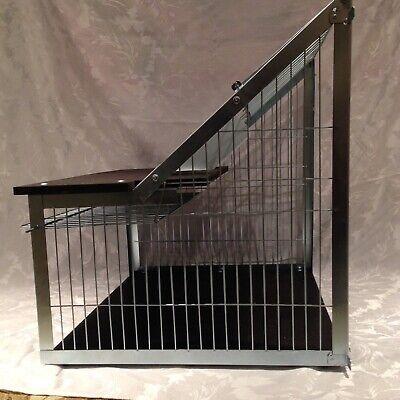 Pigeon sputnik trap