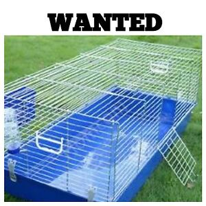 Wanted: XL or XXL bunny cage