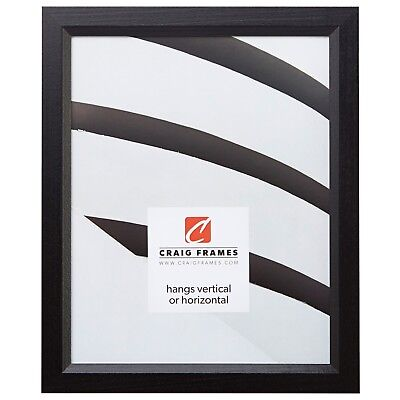 Craig Frames Economy Black, Simple Hardwood Picture Frame, 11
