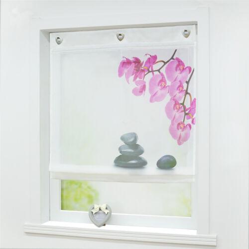 Raffrollo Küche Raffgardine Fenstergardine Weiß Modern 6080100120 Breite |  Rollos, Gardinen & Vorhänge