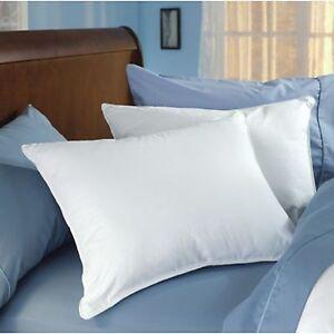 Down dreams pillow ebay for Buy hampton inn pillows