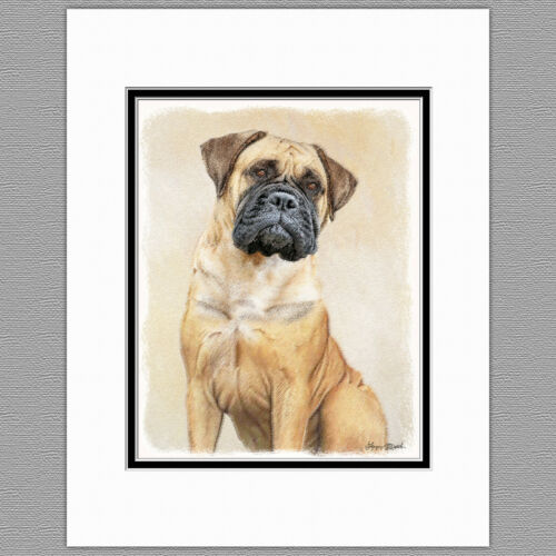 Bullmastiff Dog Original Art Print 8x10 Matted to 11x14