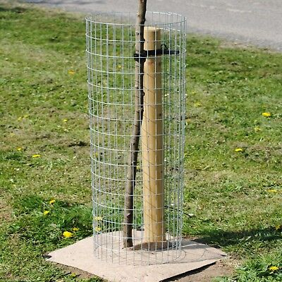 Weld Mesh Metal Tree Guard Tree Planting Protection 1.8m x 300mm Dia Grille