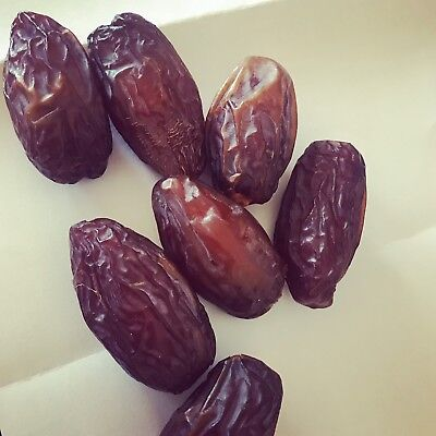 FRESH MEDJOOL DATES FROM CALIFORNIA 10 Pound Box